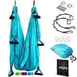 Pavandeep Aerial Yoga Swing Set - Trapeze Yoga Kit - Yoga Hammock and Inversion Sling with Ceiling Mount + Extension Straps - Professional Studio Equipment