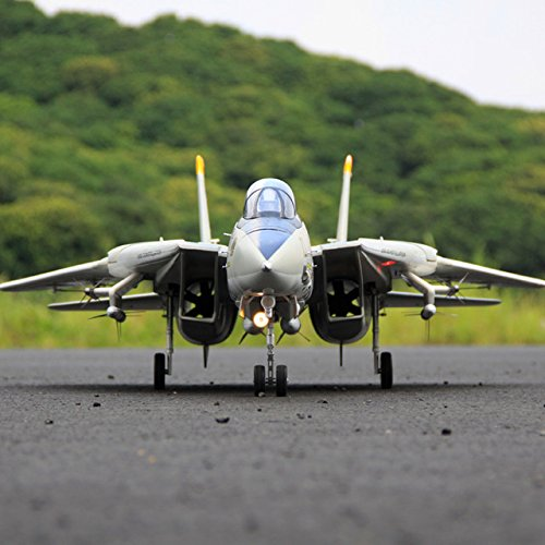 Rc Jet Model - Toy, Play, Fun, Freewing Dual 80mm rc airplane jet model F-14 Tomcat with Variable Sweep Wing KIT with servos, Children, Kids, Game