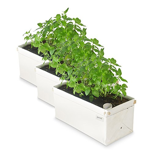 Patch Planters Easy, Compact Self Watering Herb & Greens Planter (3 Pack) Self Watering Garden Planters