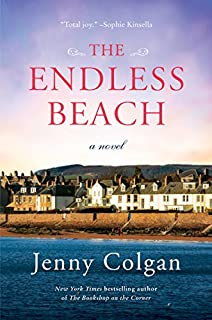 Book Cover: The Endless Beach: A Novel