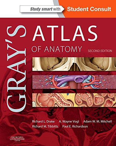 1455748021 - Gray's Atlas of Anatomy, 2e (Gray's Anatomy)