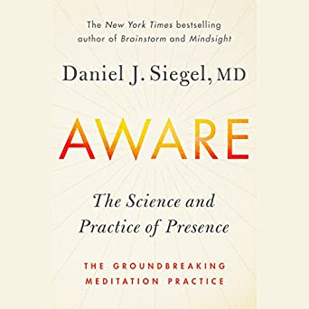 The Science and Practice of Presence--The Groundbreaking Meditation Practice - Daniel J. Siegel
