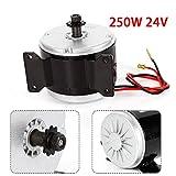 Electric Motor, 250W 24V Electric Brush MY1016