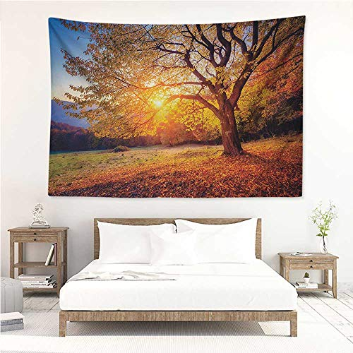 (alisos Fall Tree,Wall Decor Tapestry Big Majestic Autumn Tree Shedding Faded Leaves on The Hill Slop Seasonal Landscape 80W x 60L Inch Tapestry Wallpaper Home Decor Brown)