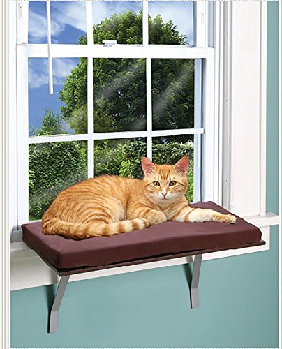 Deluxe Window Perch - Foam Cushion Deluxe Kitty Window Perch With Fleece Cover