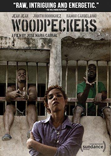 Woodpeckers (Carpinteros)