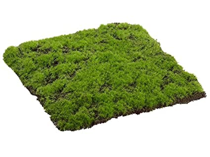Silk Plants Direct Moss Sheet Pack Of 6 Green Amazon Co Uk