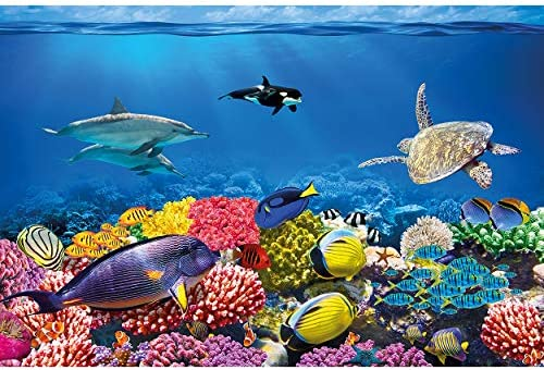 Fish Sea Blue Underwater Ocean Wall Mural Photo Wallpaper GIANT WALL DECOR