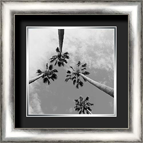 Tropical Gaze 20x20 Silver Contemporary Wood Framed and Double Matted (Black Over Silver) Art Print by Stewart, Wil