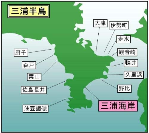 マイ海図 高精細印刷版パウチ加工無し -三浦半島 三浦海岸 7枚組