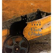 Chats agenda 2000