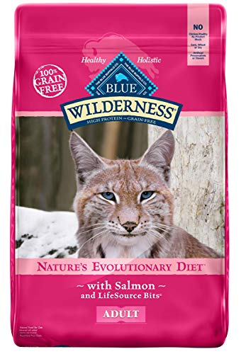 Blue Buffalo Wilderness High Protein Grain Free, Natural Adult Dry Cat Food, Salmon -