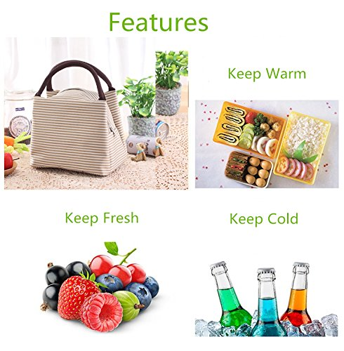 Portable Lunch Bag,Insulation Cooler Storage Container Picnic Tote (Khaki)