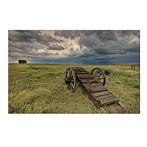 YOLIYANA Barn Wood Wagon Wheel Durable Door Mat,Old Prairie Cart Agricultural Field Ranch Dramatic Stormy Sky for Home Office,19.6