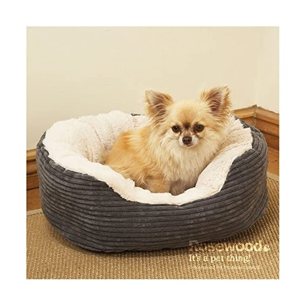 Rosewood Plush Dog Bed 2