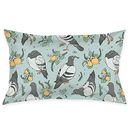 Pigeon Pillow - Kidhome 2030 Inch Throw Pillow Cases Pigeon and Fruits Decorative Pillowcase Cushion Cover for Sofa