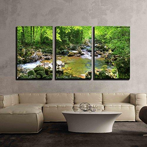 wall26 - 3 Piece Canvas Wall Art - Beautiful Landscape/Scenery Forest Stream Smolny in Russian Primorye Reserve in Autumn - Modern Home Decor Stretched and Framed Ready to Hang - 16