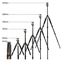 Camera Tripods for Digital Camera, TripleTree 66\