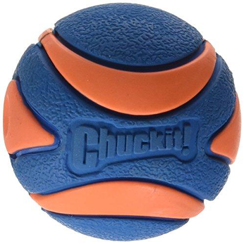 CHUCKIT! ULTRA SQUEAKER BALL (Ball Launcher Toss Toys)