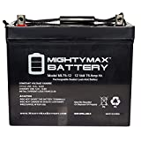 Mighty Max Battery 12V 75Ah SLA Battery Wayne ESP25 Back-Up Pump brand product