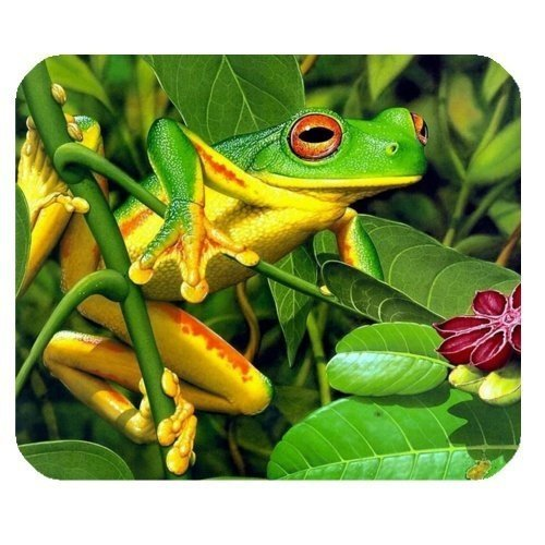 Tropical Rainforest Vibrant Tree Frog Computer Mouse Mat for Rectangle Mouse Pad -