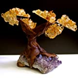 Citrine & Amethyst Geode Crystal Cluster Wire Tree of Life Art Twin Spirit Tree