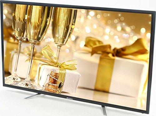 Sansui SLED6520 65-Inch LED TV