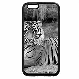 iPhone 6S Case, iPhone 6 Case (Black & White) - Tiger Sitting Majestic