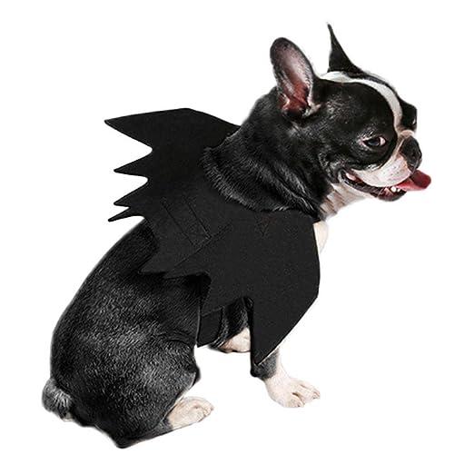 Earthily Camisa para mascotas wendaby Halloween Mascota Alas ...