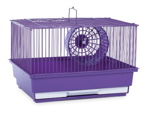 Prevue Hendryx SP2000PR Single Story Hamster and Gerbil Cage