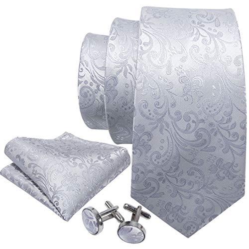 Barry.Wang Mens Tie Set Gray Floral Silk Necktie Handkerchief ()