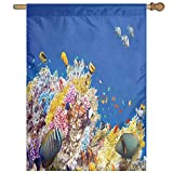 HUANGLING Colorful Underwater World With Corals And Tropical Fish Exotic Diving Travel Home Flag Garden Flag Demonstrations Flag Family Party Flag Match Flag 27''x37''