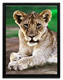 Wanted Art Ready to Hang Framed Canvas Wall Art 44 x 64 Tiger Paw Cub Portrait Painting Africa