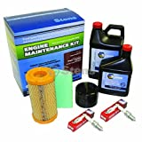 Stens 785-531 Engine Maintenance Kit