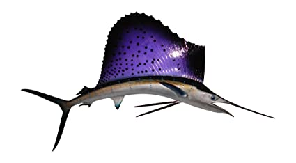 amazon com 42 sailfish half mount fish replicas made for