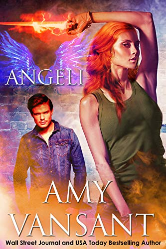 Book: Angeli - The Pirate, the Angel & the Irishman by Amy Vansant