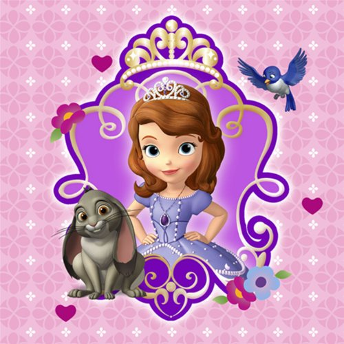 Disney Sofia the First Party Dessert Napkins 16 Pack for $<!--$2.79-->