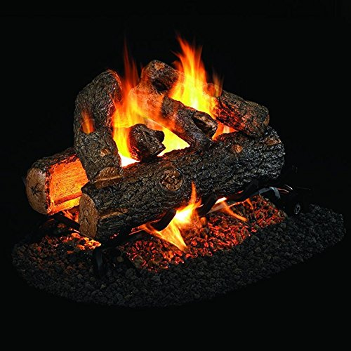 Peterson Real Fyre 19-inch Golden Oak Designer Plus See-thru Log Set With Vented G45 Burner (G45 Burner)