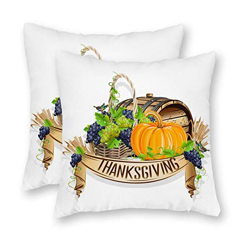 DKISEE Thanksgiving Day Harvest Pumpkin Pillow Covers Autumn/Fall Decor Covers Give Thanks Sofa Decorative Square Accent Pillow Cases Set of 2
