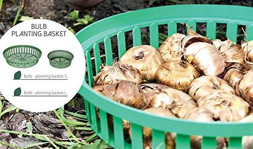 10-er Set Blumenzwiebel Pflanzschale Zwiebel-Schalen Garten 2 Größen Ø19 - Ø25 cm Neu!! (Ø - 19cm)