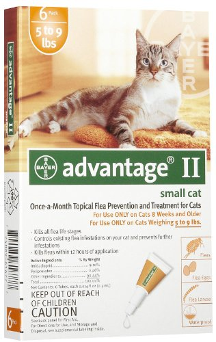 12 MONTH Advantage Orange for cats under 9lbs by Advantage