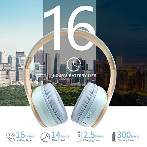 Lobkin Over Ear Headphones with Microphone, Stereo Hi-Fi Sound, Portable FM Radios TF Foldable Headsets for TV/Travel/Home/Office/Class/Business Wireless Headphones