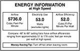 "Honeywell Ceiling Fans 50195 Rio 54"" Ceiling Fan"
