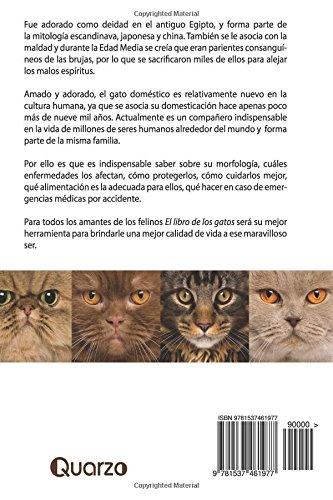 El libro de los gatos: Historias y consejos para su cuidado (Spanish Edition): Walfrido López González: 9781537461977: Amazon.com: Books