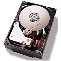 IBM 3.5-Inch 500 GB Hot-Swap 2 MB Cache Internal Hard Drive 81Y9786