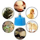 Onpiece 220V 100-300W Pets Livestock Piglets Chickens Heat Warm Lamp Keep Warming Bulb