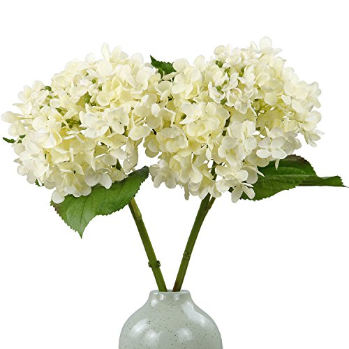 Rinlong Artificial Hydrangeas Silk Flowers Stems Cream for Flowers Arrangement Home Party Wedding ()