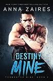 Destiny Mine (Tormentor Mine) (Volume 3)