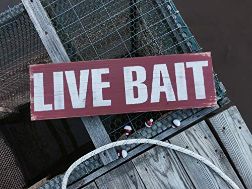 Adonis554Dan Live Bait Signs Man Cave Decor Fishing Hut Decor Lake Life Art Cabin Wall Art Bait Shop Signs Fathers Day Rustic Wood Signs