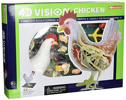 Famemaster 4D Vision Chicken Anatomy Model